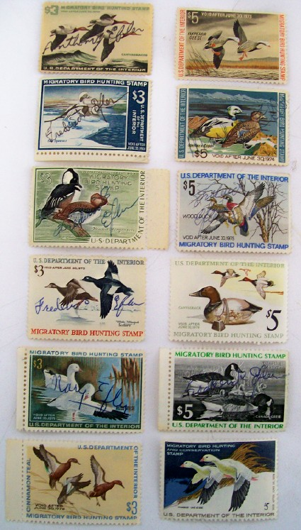 12 Different Migratory Bird Hunting Stamps - Duck Stamps