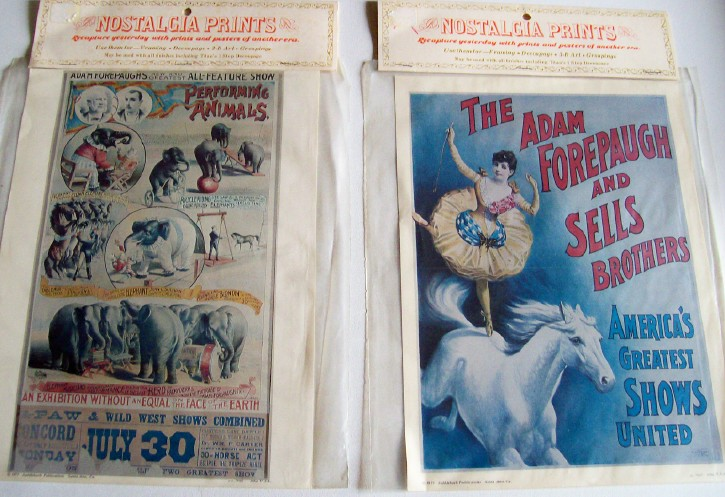 Adam Forepaugh & Sells Brothers Circus Poster Prints - MIP