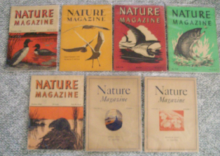 Lot Of 1940s Nature Magazines - American Nature Association
