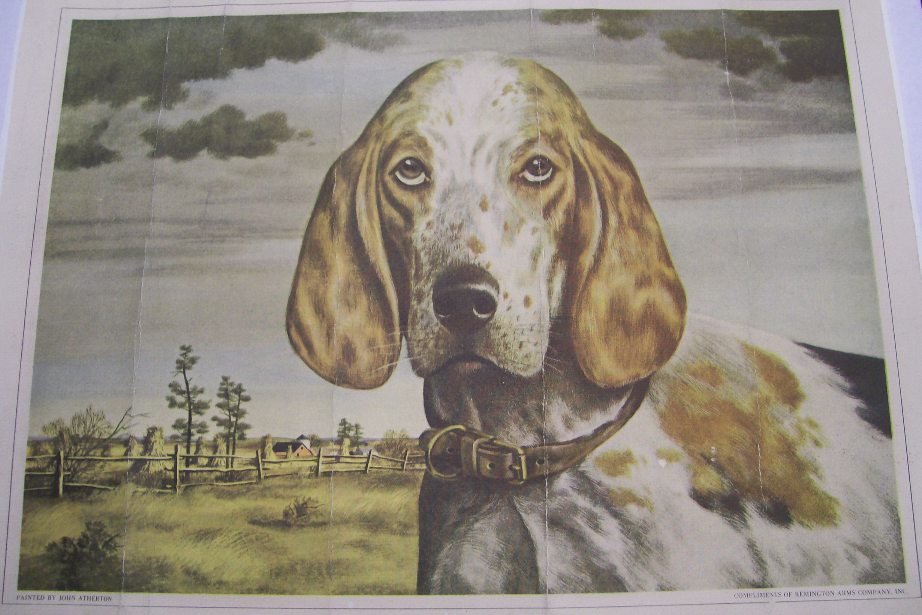 Remington Arms Co. Poster of Beagle painted by John Atherton