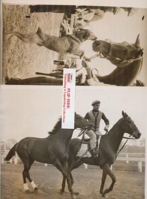 Pair Of Vintage Photos Of Cravat Man O' War's Grandson
