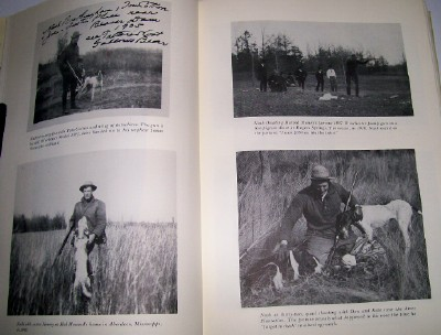 Collection Of Nash Buckingham's Best Bird Hunting Stories