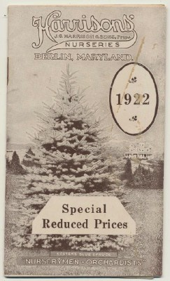 1922 Harrison Nursery Orchard Garden Tree Shrub Catalog