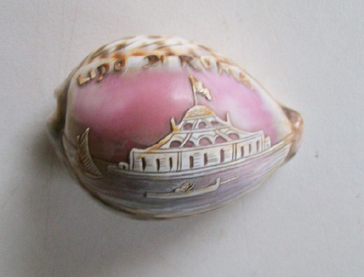 Carved Seashell Souvenir Of Rome