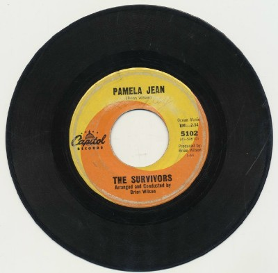 Pamela Jean+After The Game-The Survivors-Beach Boys Brian Wilson