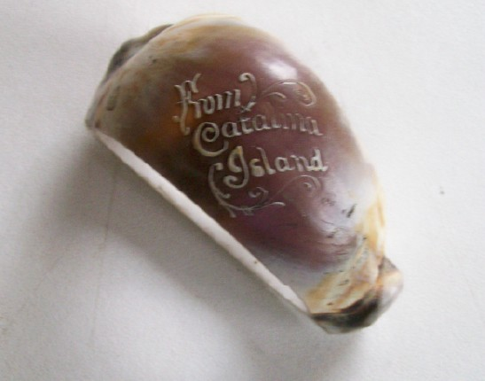 Souvenir Carved Sea Shell Napkin Ring From Catalina Island